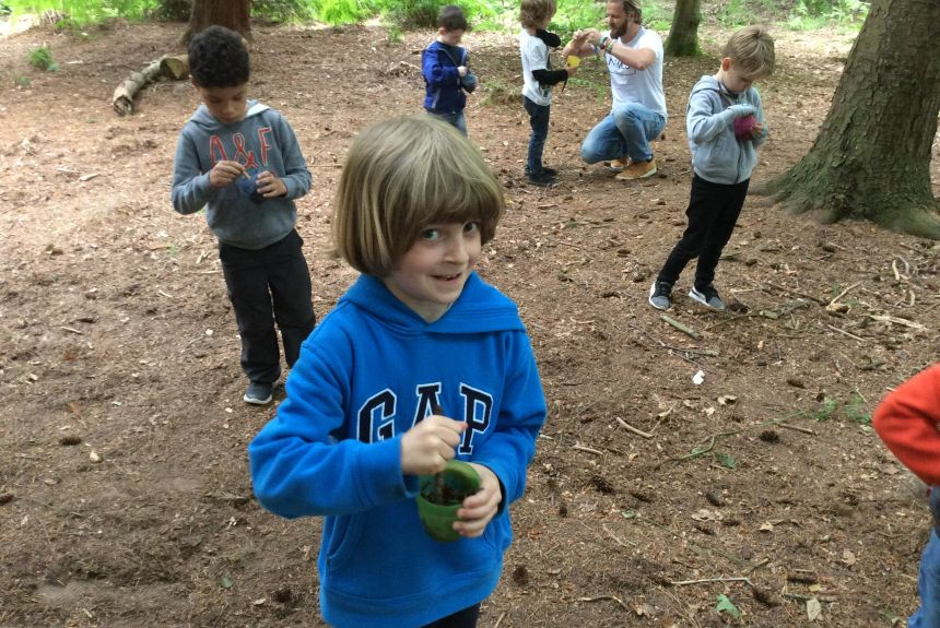 Year 1 visit to Delamere Forest - 1E