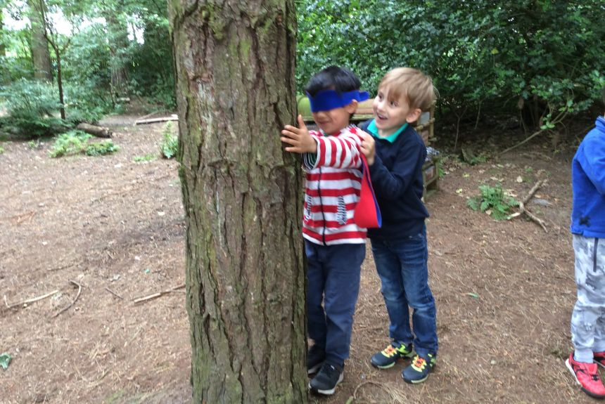 Year 1 visit to Delamere Forest - 1A