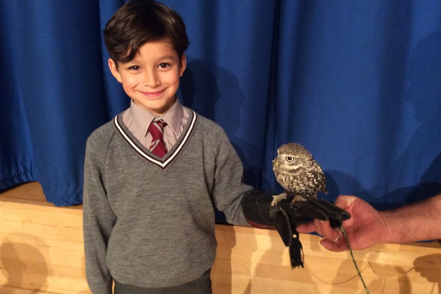The Wise Owl flies in to meet Year 2 - more pictures!