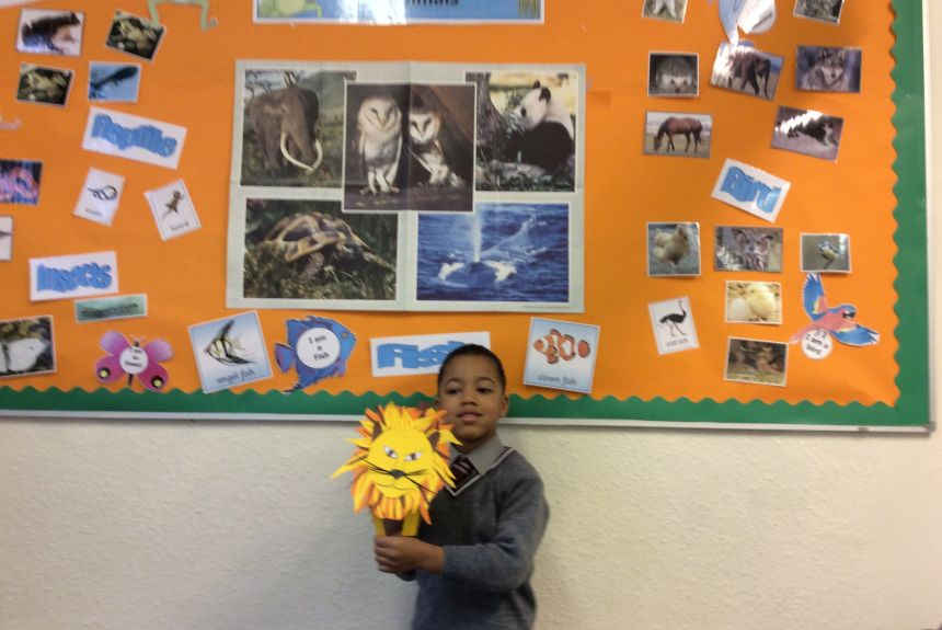 Year 1 Science - Animals