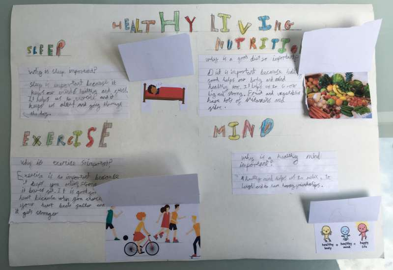 Year 2 Healthy Living Posters