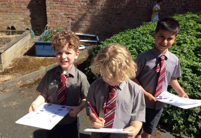 Springing into Science in Year 1!