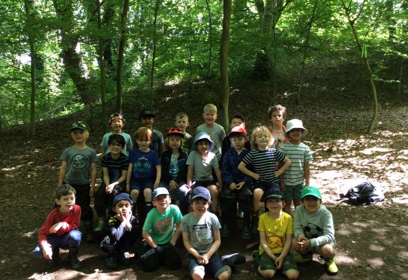 1H visit to the Fairy Forest