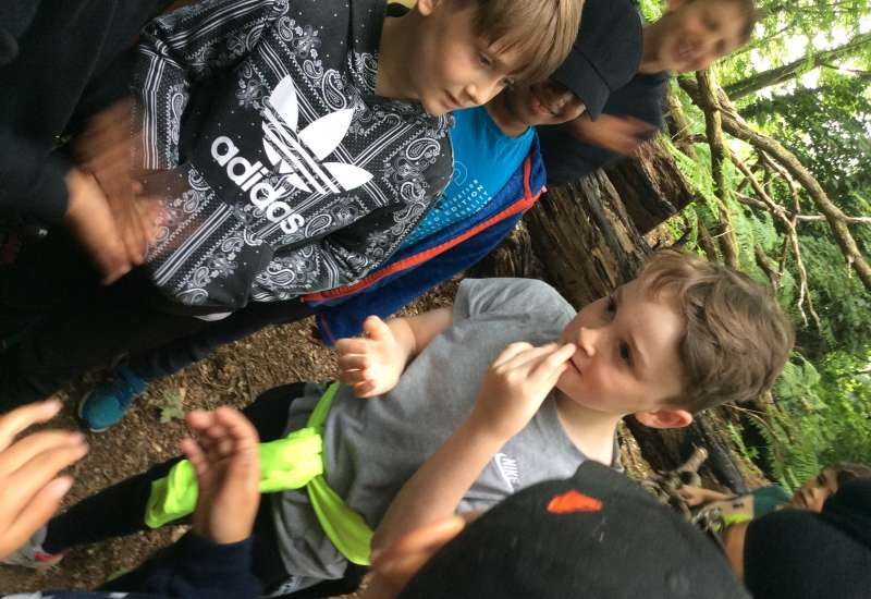 4C Survive a Day In the Woods