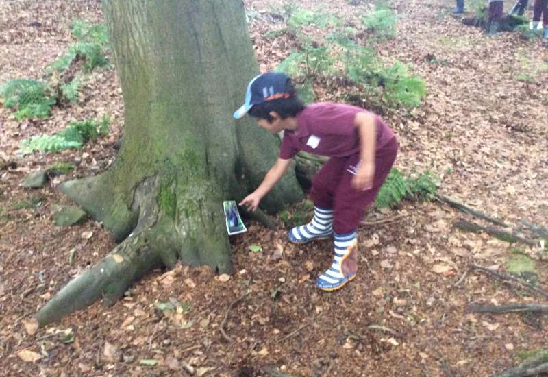 Reception trip to Delamere Forest