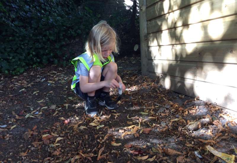 2S Forest School